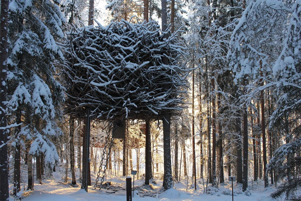 Bird's Nest im Winter, Foto: Treehotel