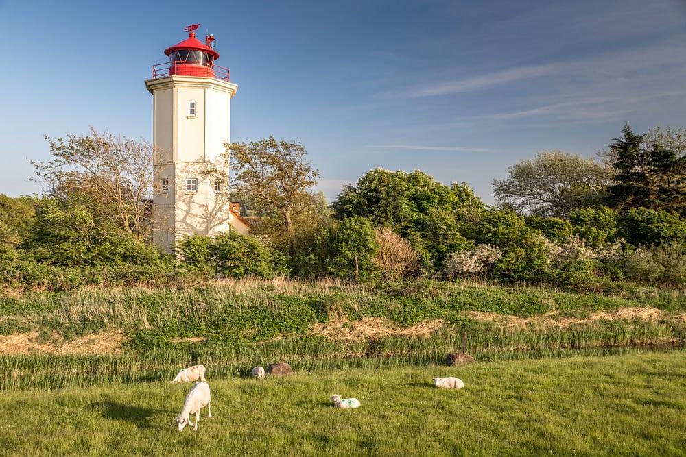 Leuchtturm in Westermakelsdorf, Foto: paul-oliver neumann/EyeEm / Adobe Stock