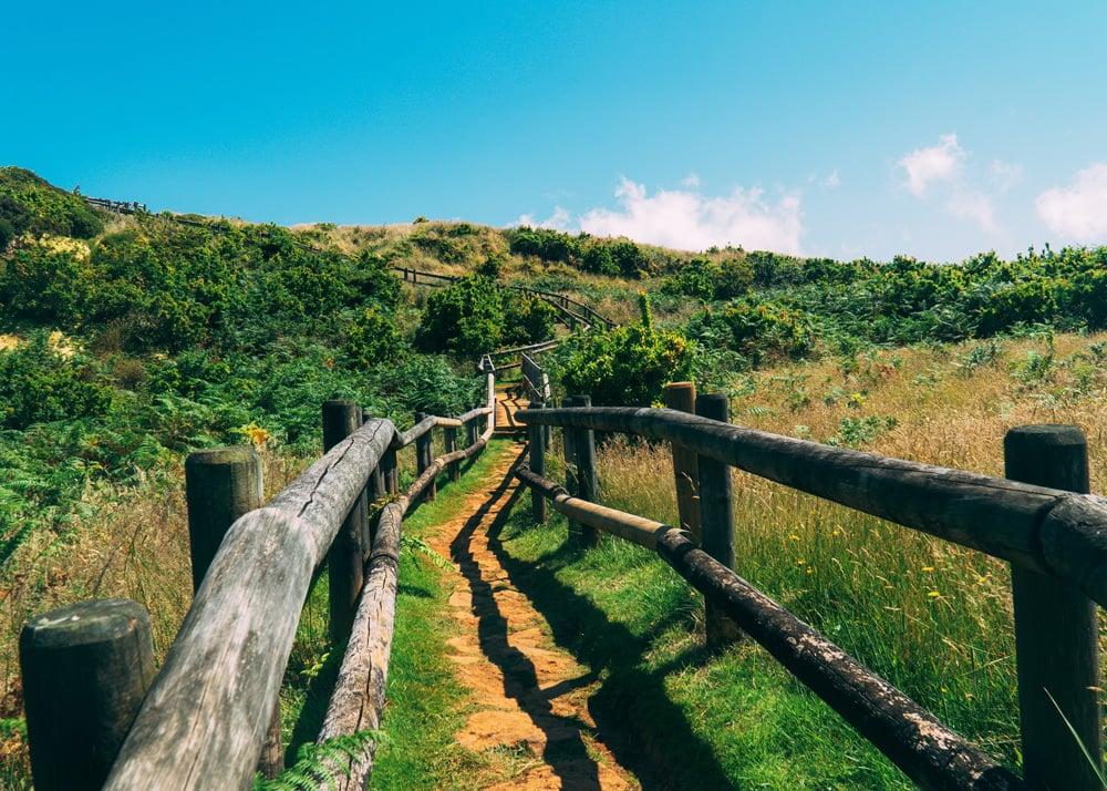Einer von zahlreichen Wanderwegen auf den Inseln, Foto: Natanael Vieira / Unsplash